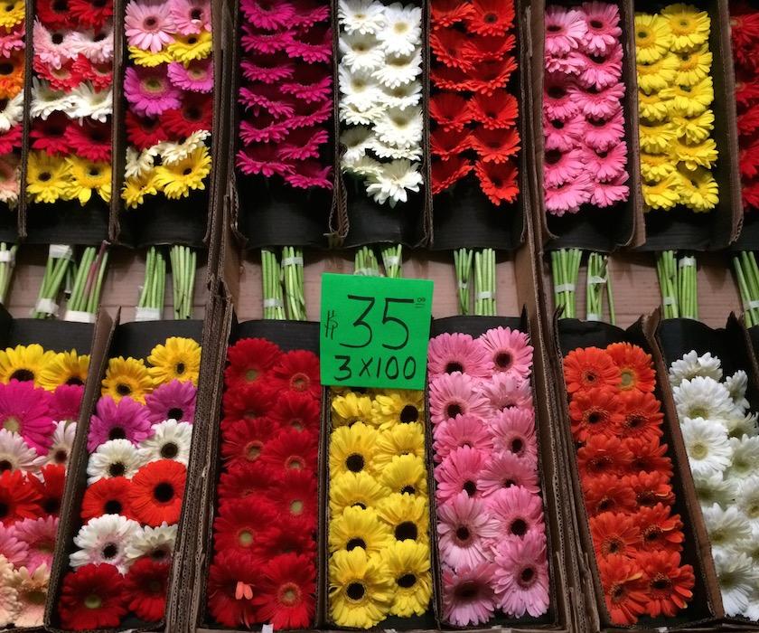 Mercado De Jamaica Lleve Sus Flores Marchante México Chulo