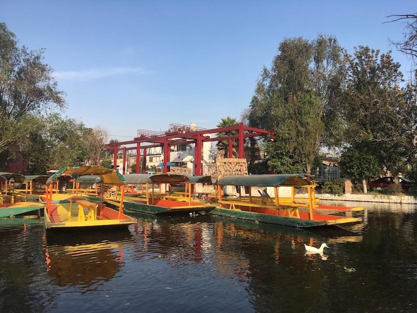 Xochimilco7